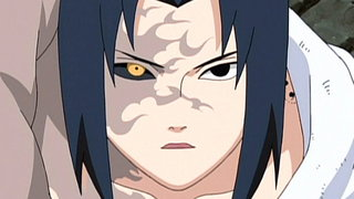 VIZ | Watch Naruto Shippuden Episode 117 for Free