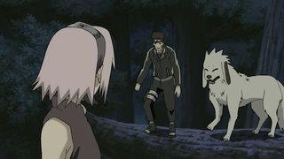 Viz Naruto Shippuden Episode 100
