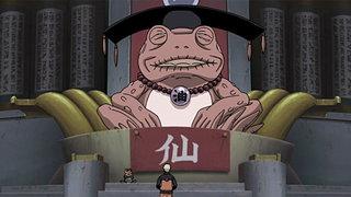 VIZ   Watch Naruto Shippuden Episode 220 0 for Free