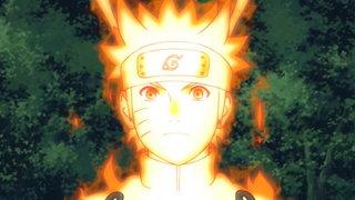 VIZ | Watch Naruto Shippuden Episode 309 0 for Free