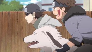 VIZ | Watch Naruto Shippuden Episode 498 for Free